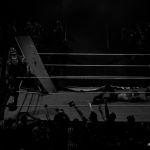 191113_WWE-Erfurt_734